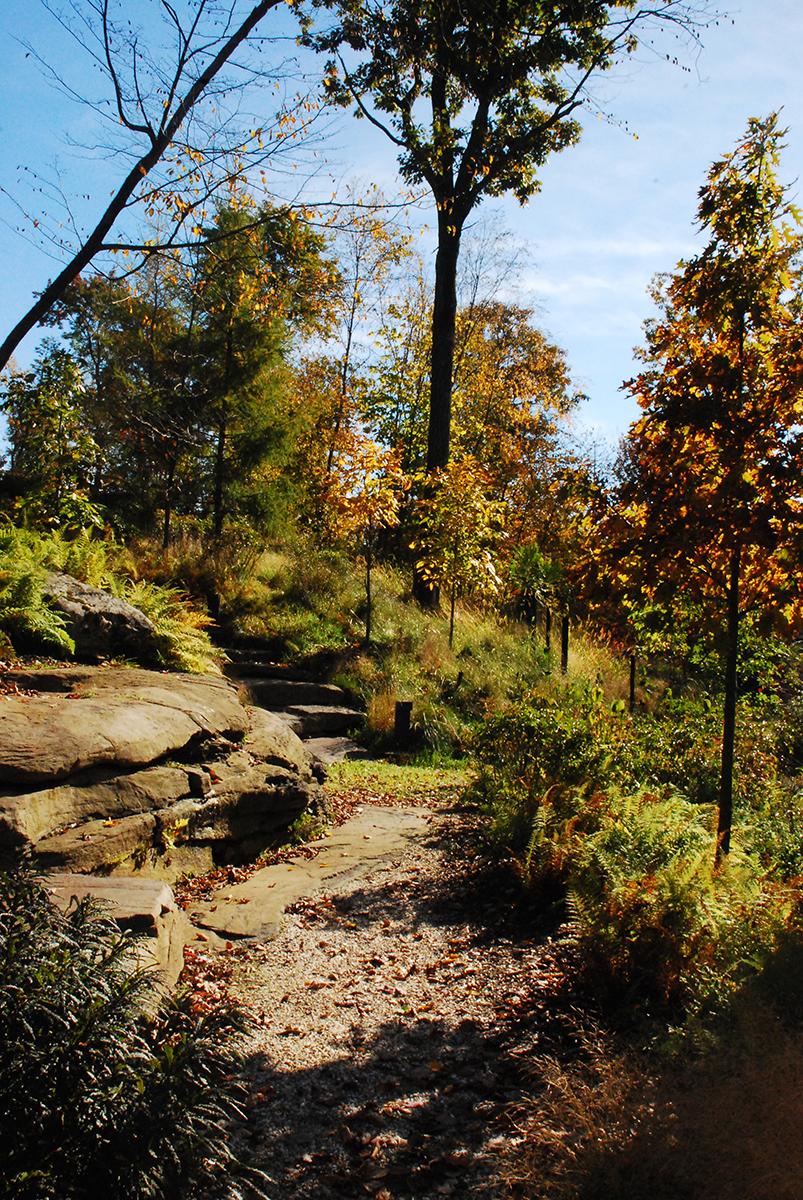 Cypress Landscapes Woodstock NY Residence